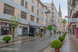 Un total de 20 establecimientos se han inscrito en el III Concurso de Jardines de Torrelavega