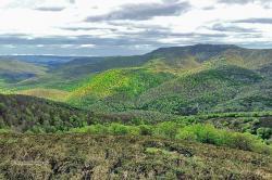El Gobierno de Cantabria crea el Consejo Asesor de Cambio Climático y Medio Ambiente de Cantabria
