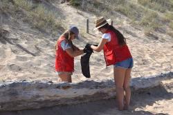Jornada de recogida de #Basuraleza en la Playa de Valdearenas de Piélagos el día 26